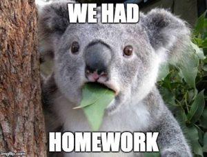 coala homework meme