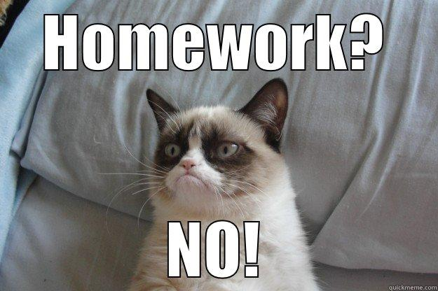 grumpy cat homework meme