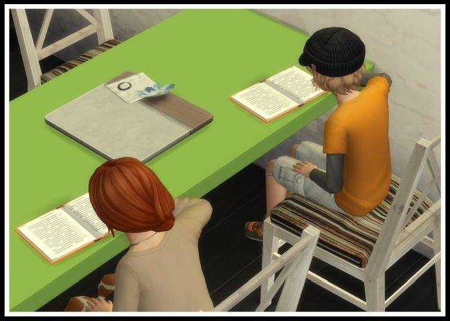 sims-4-homework