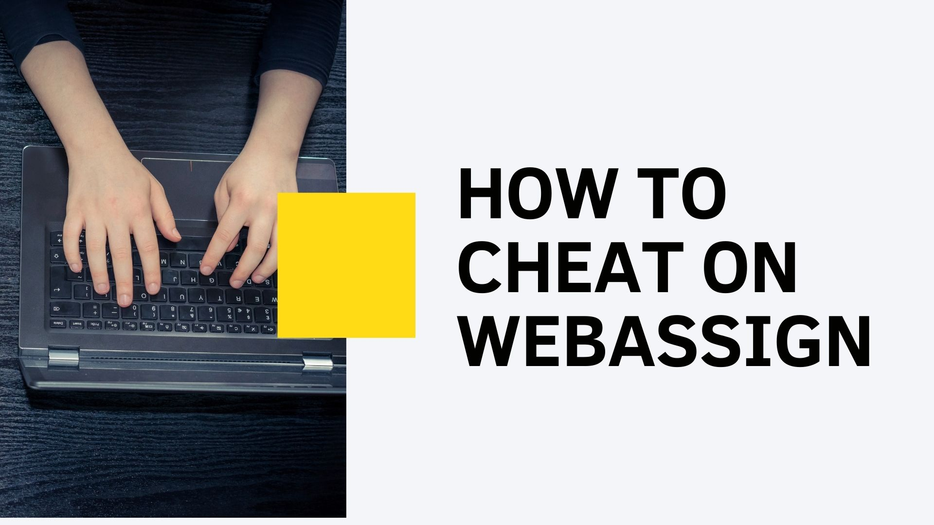 how to cheat webassign